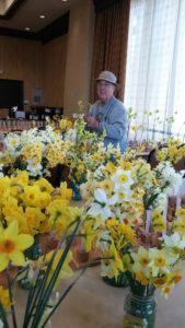 Bob spotts and seedlings