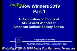 2019 ADS Show Winners